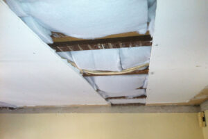 25-soundproofed-ceilings